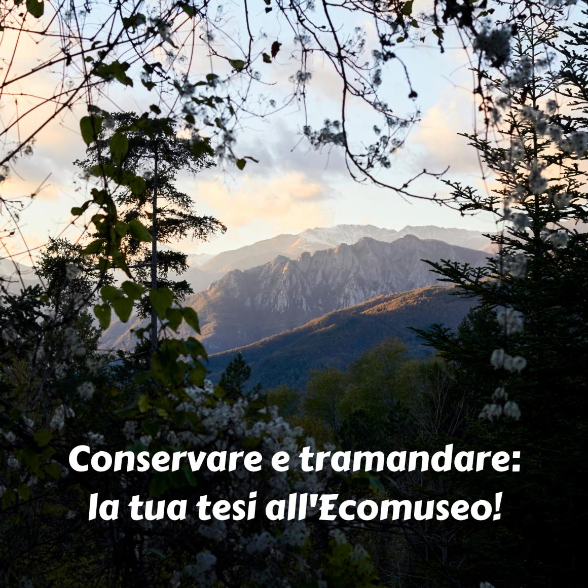 Conservare e tramandare: la tua tesi all'Ecomuseo!
